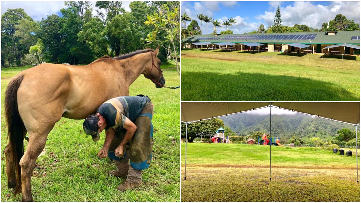 Alakai O Kauai Monday Message
