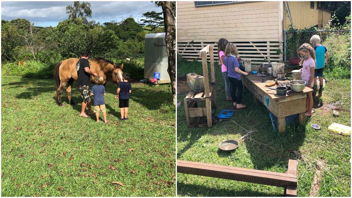 Outdoor Classroom Alakai O Kauai